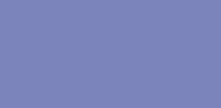 msg logo color